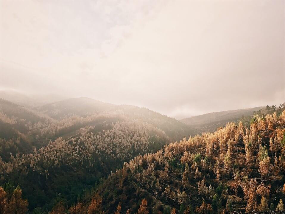 vale do douro